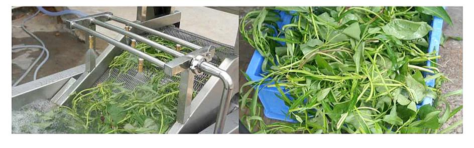 Air-Bubble-Vegetable-Washer3 maksindoyogya