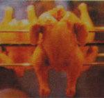 Jual Pemanggang Ayam Gas Rotisseries HORIZONTAL di Yogyakarta