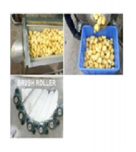 mesin brush roller roof fruit washer maksindoyogya