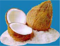 mesin-pemarut-kelapa-maksindo produk maksindoyogya