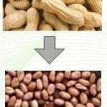 Jual Mesin Pemecah Kulit Kacang di Yogyakarta