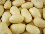 mesin-pengupas-kentang-dan-ubi maksindo